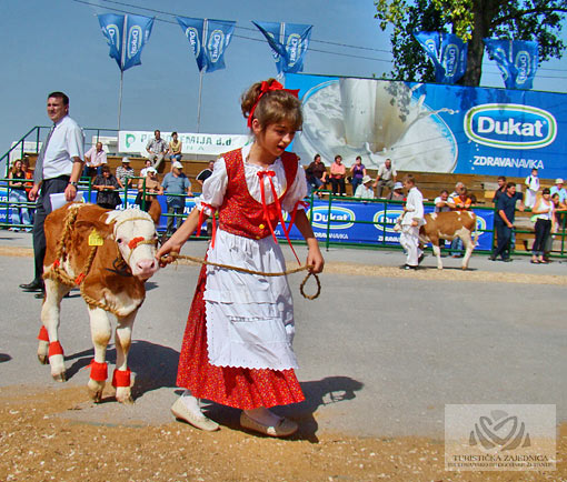 International Autumn Bjelovar fair