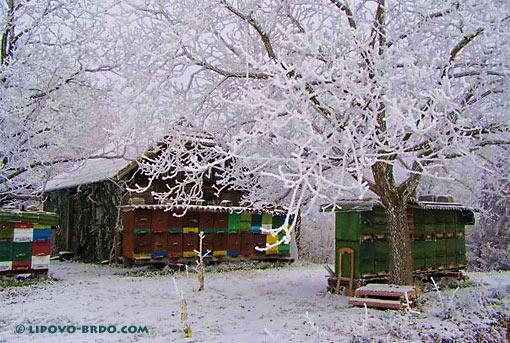 Family farm Kovač Lipovo Brdo
